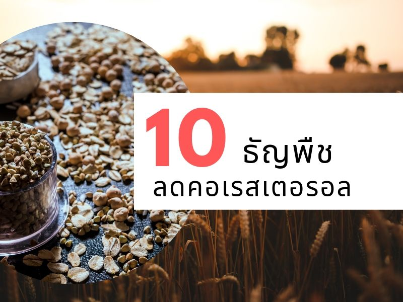 10 ธัญพืชลดคอเรสเตอรอล 01